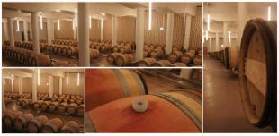 Cheval Blanc - Le Nouveau Chai