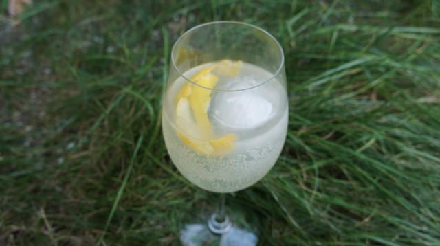 Gin Fizz x extraterrien