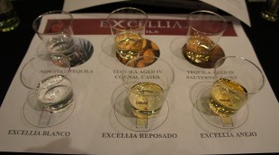 Dégustation Tequila Excellia